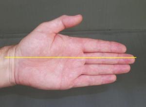 6 wrist straight paint
