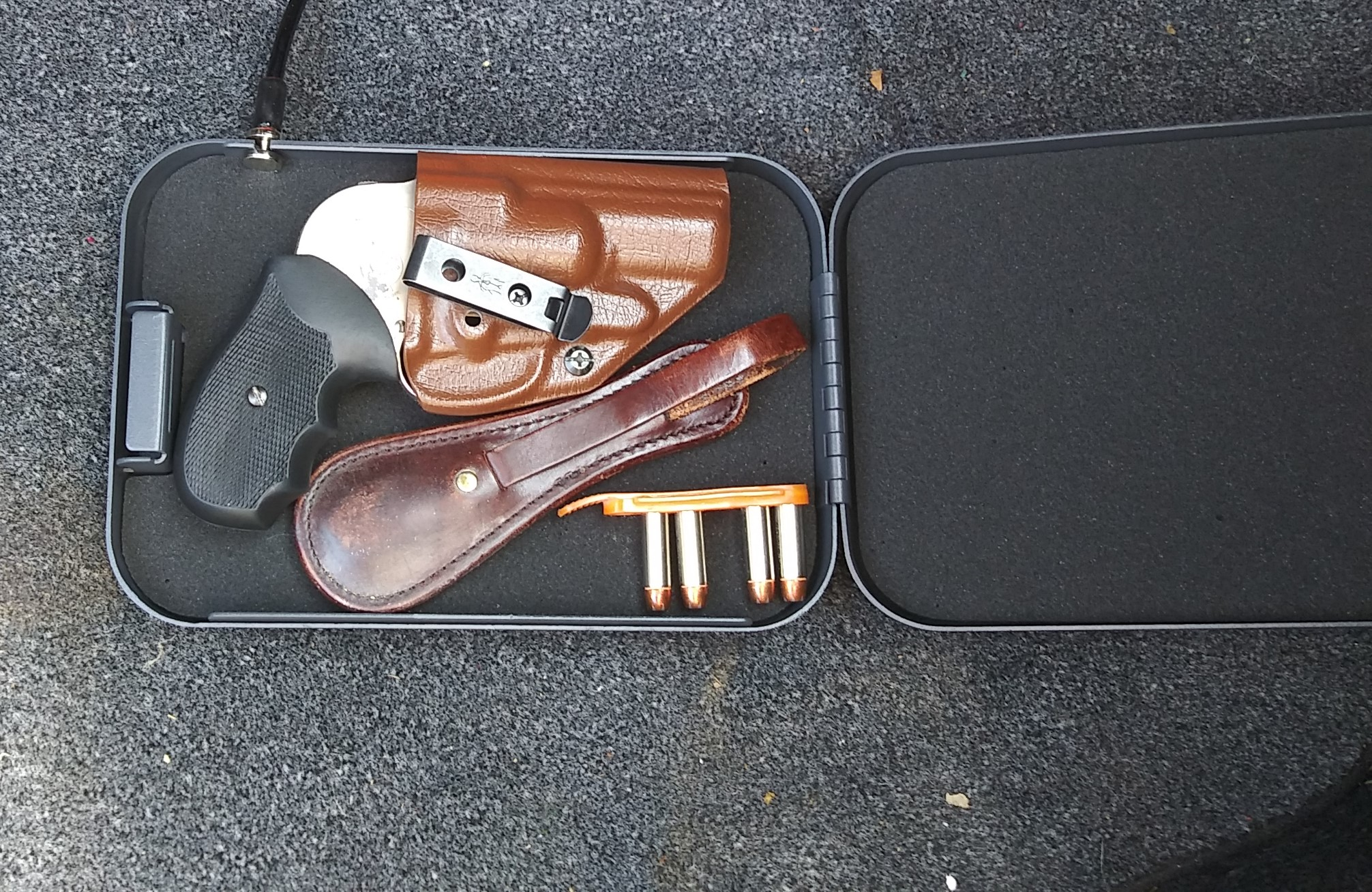 gun in safe